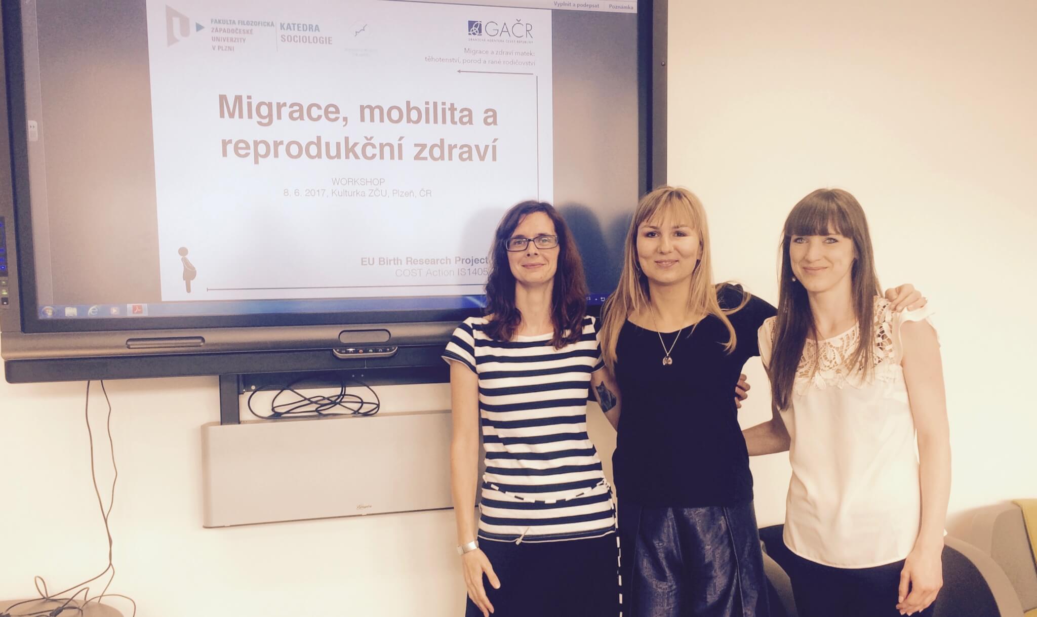 Migrace a zdraví matek - Těhotenství, porod a rané rodičovství